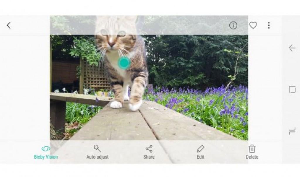 Bixby Vision на Samsung Galaxy S8